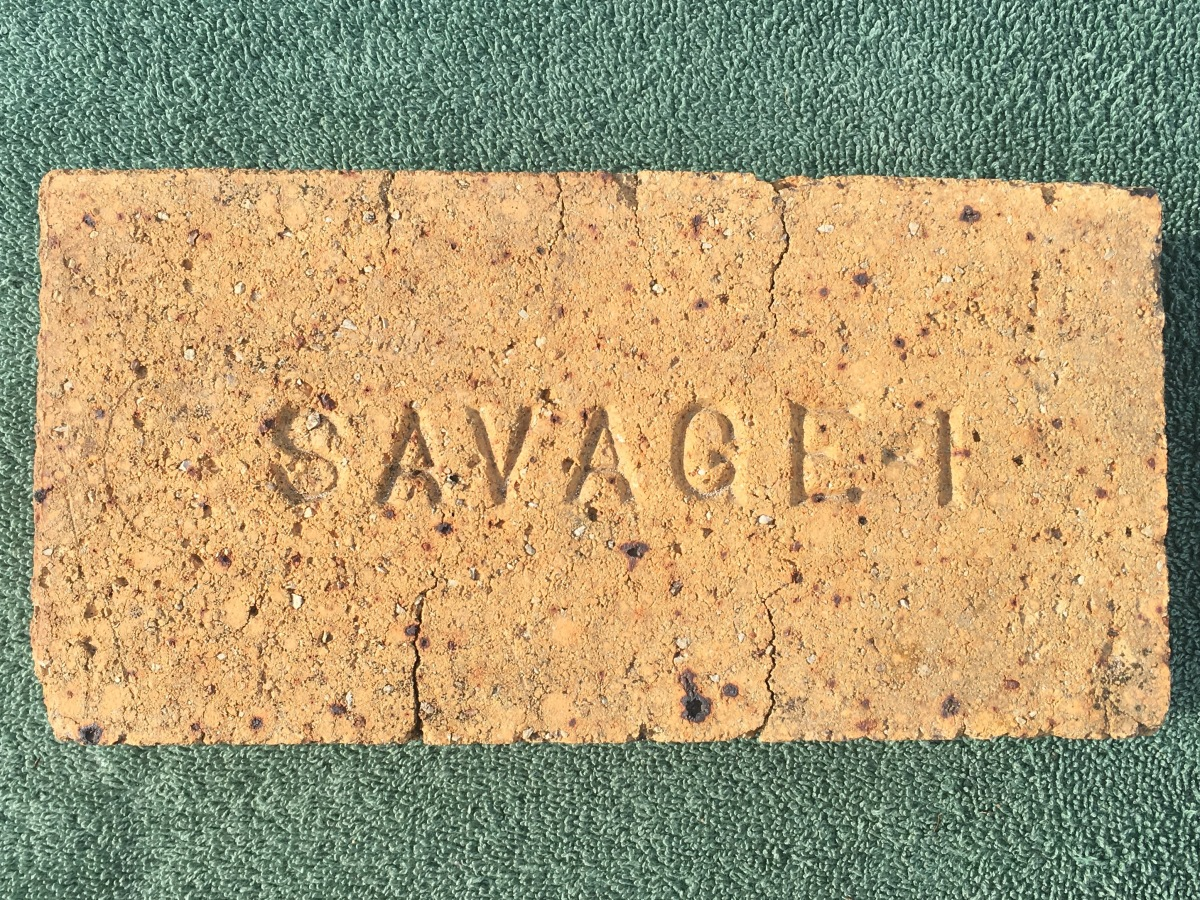 Savage 1 Brick
