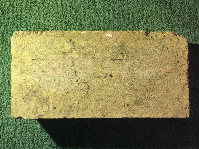 Chief Brick 2 7-29-17